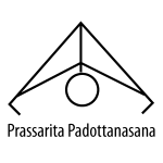 Prassarita Padottanasana - Standing Wide Legged Forward Bend