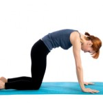 How to Stretch the Shoulders, Chest and Back with Cat and Cow Pose