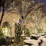 Yoga by the Christmas Lights