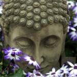 In the Garden of Mind…